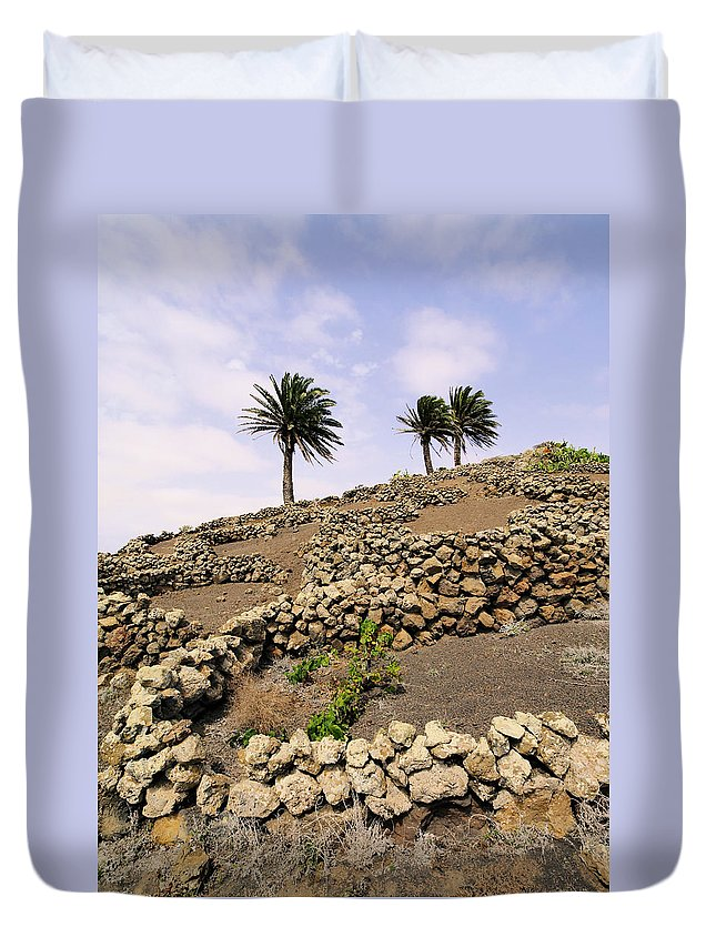 Vineyard Duvet Cover featuring the photograph Vineyard On Lanzarote by Karol Kozlowski