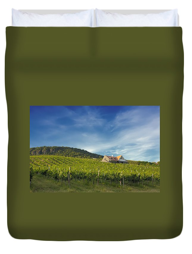 Agriculture Duvet Cover featuring the photograph Vineyard On Sunny Hill by Jan Brons