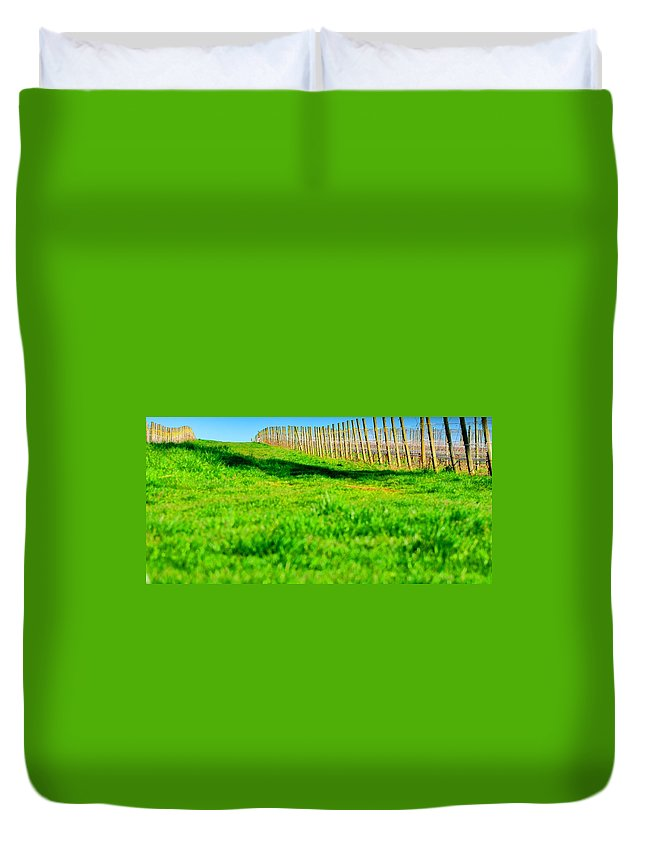 Agriculture Duvet Cover featuring the photograph Vineyard Path 22628 by Jerry Sodorff