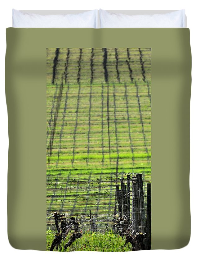 Anne Duvet Cover featuring the photograph Vineyard Poles 23051 2 by Jerry Sodorff