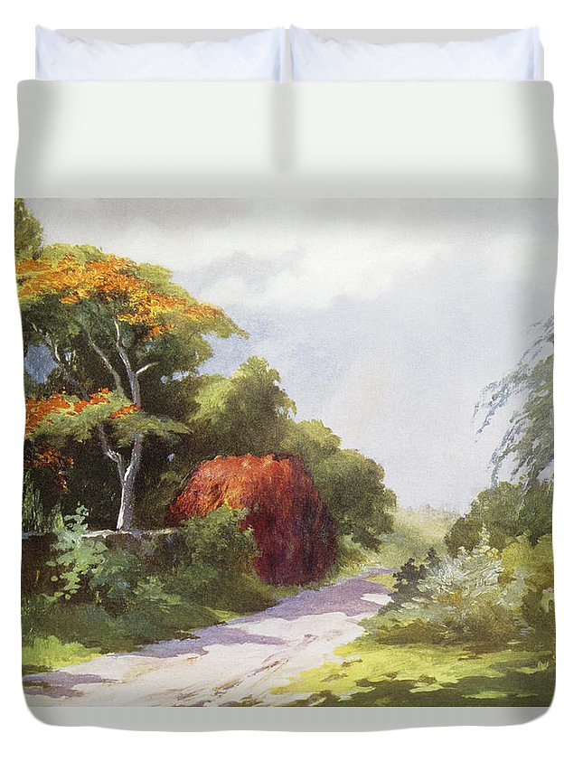 1921 Duvet Cover featuring the painting Vintage Manoa Valley by Hawaiian Legacy Archive - Printscapes