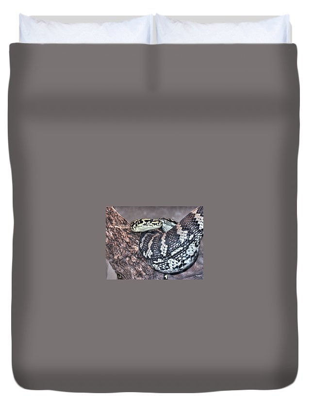 Viper Duvet Cover featuring the photograph Viper Love by Diego Re