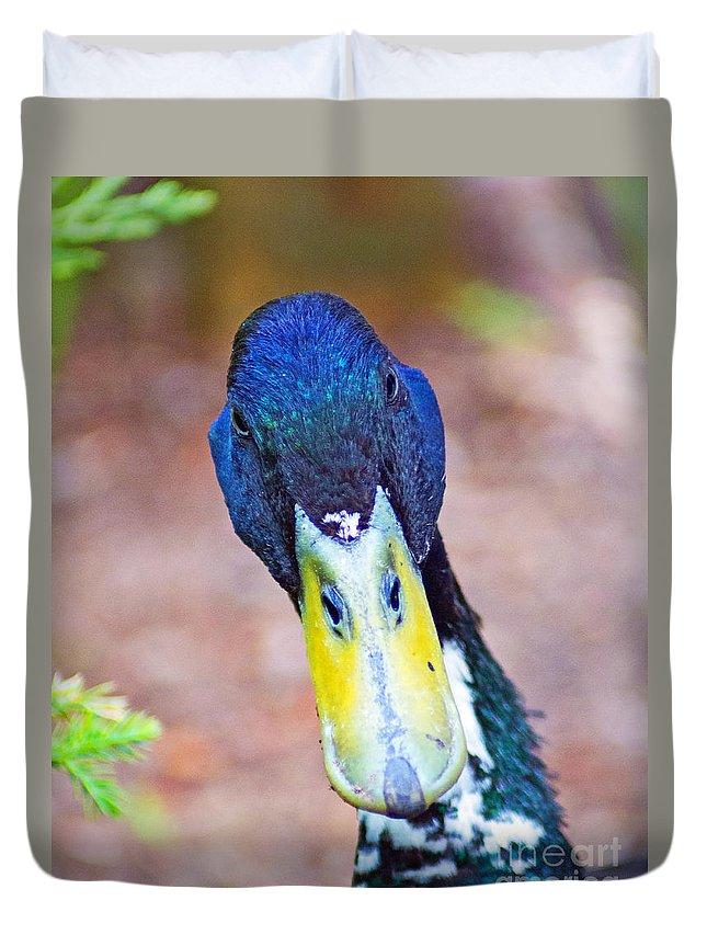 Duck Duvet Cover featuring the photograph Wabbit Season by Joe Geraci