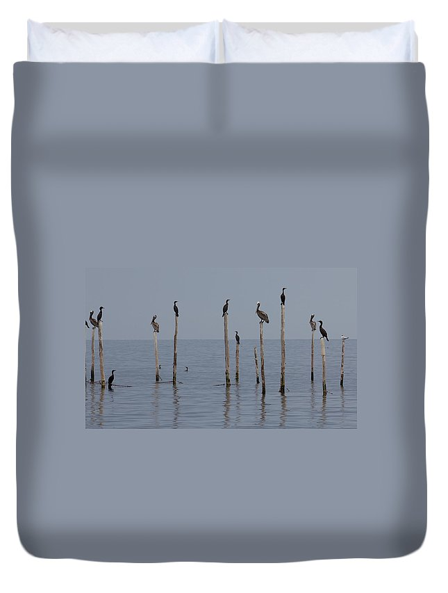 Bay Duvet Cover featuring the photograph Waiting 1 by Leah Palmer