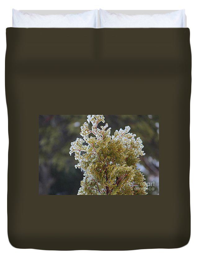 Waiting For Spring - Ice Storm - Closeup Duvet Cover featuring the photograph Waiting For Spring - Ice Storm - Closeup 2 by Barbara Griffin