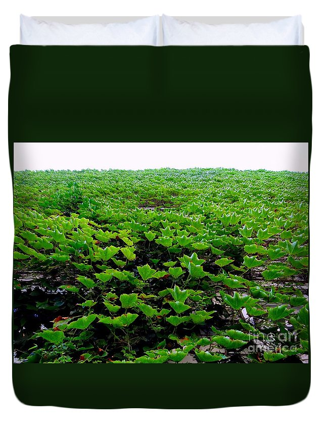 Nature Duvet Cover featuring the photograph Wall Of Ivy by Ed Weidman