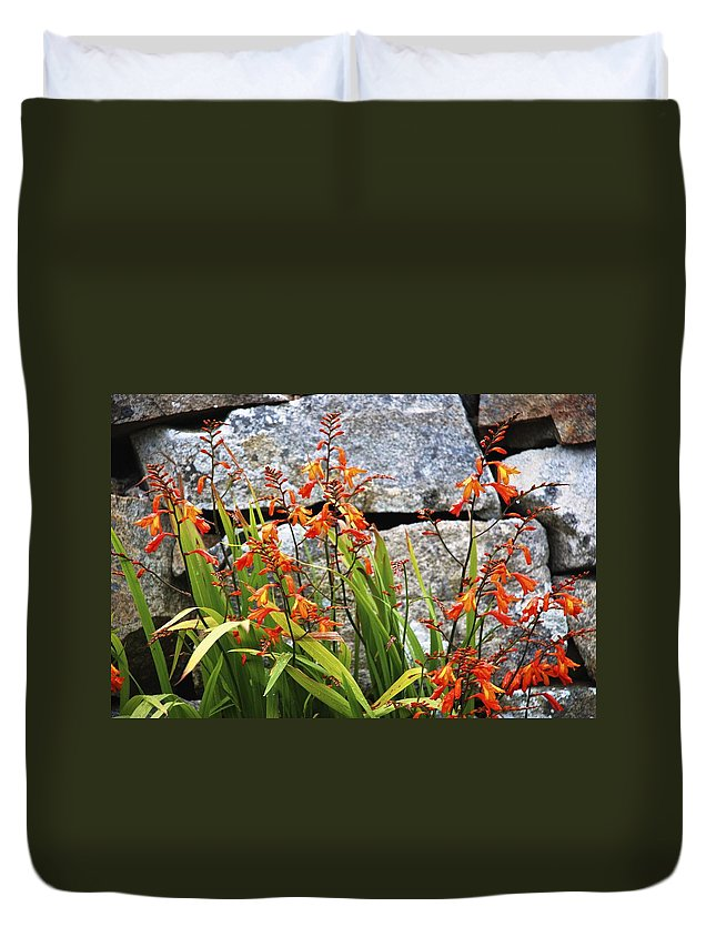 Flowers Duvet Cover featuring the photograph Wallflowers by Charlie Brock