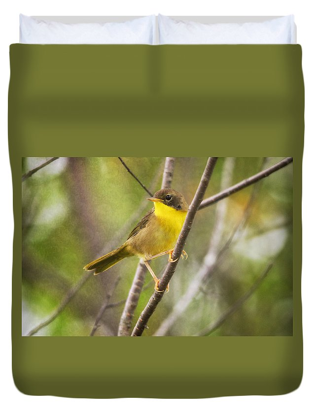 Warbler Duvet Cover featuring the photograph Warbler In Sunlight by Susan Capuano