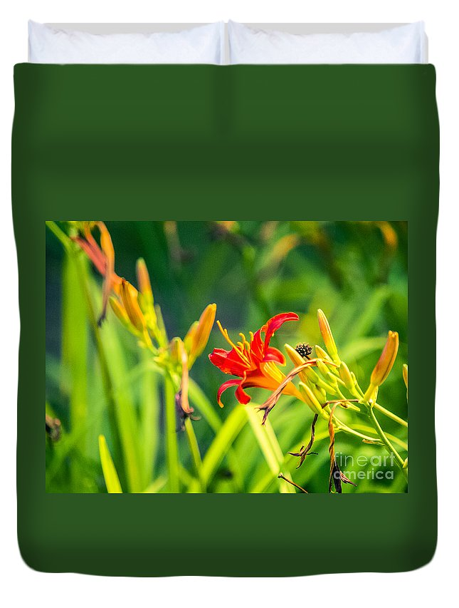 Lilly Duvet Cover featuring the photograph Wascana-82 by David Fabian