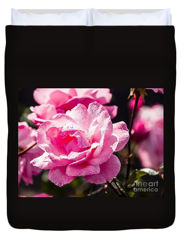Rose Duvet Cover featuring the photograph Wascana-94 by David Fabian