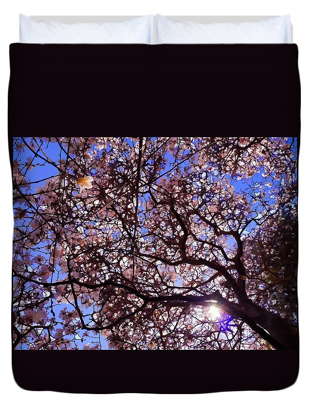 Albany Duvet Cover featuring the photograph Washington Park Iv by Tina Baxter