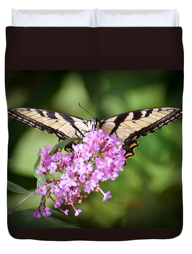 Tiger Swallowtail Butterfly Duvet Cover featuring the photograph Watching by Kerri Farley