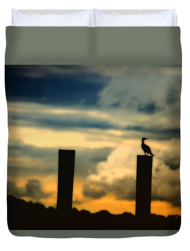 Landscape Duvet Cover featuring the photograph Watching The Sunrise by Karol Livote