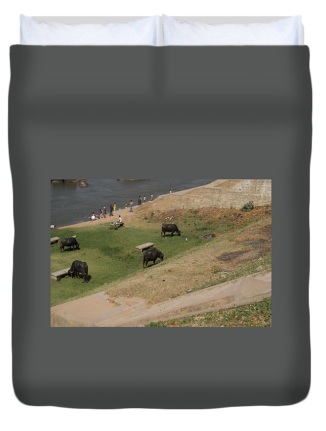 Animals Duvet Cover featuring the digital art Water Buffalo by Carol Ailles