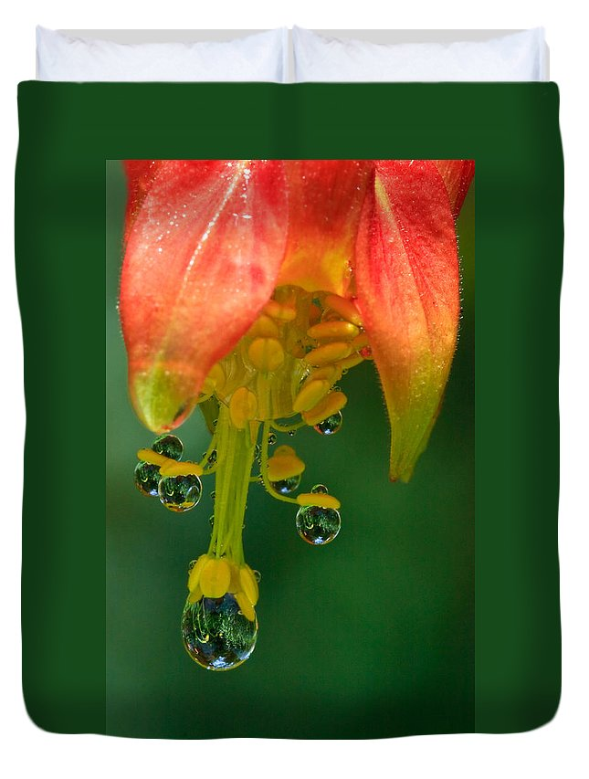 Columbine Duvet Cover featuring the photograph Water Droplets by Beth Sargent