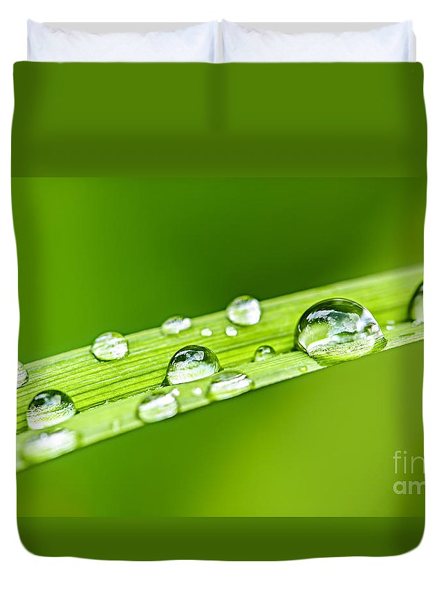 Drop Duvet Cover featuring the photograph Water Drops On Grass Blade by Elena Elisseeva