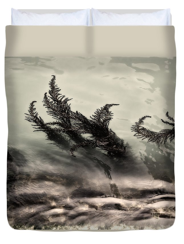 Water Fronds Duvet Cover featuring the photograph Water Fronds by Dave Bowman