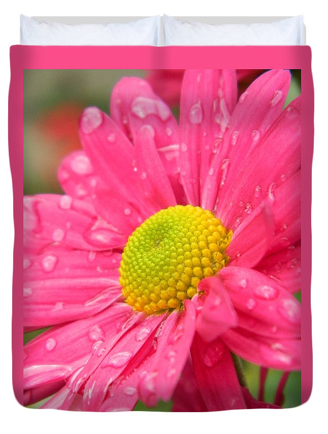Pink Duvet Cover featuring the photograph Water Kissed Pink Chrysanthemum 2 by Nicki Bennett