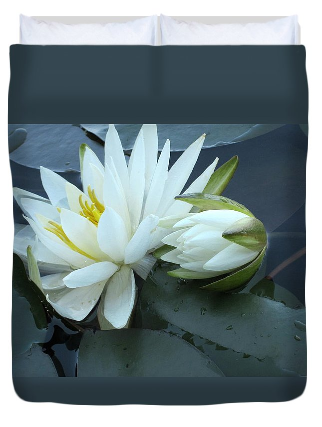 Water Lily Duvet Cover featuring the photograph Water Lilies by Kathy Anderson