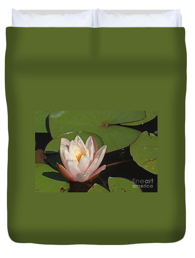 Nature Duvet Cover featuring the photograph Water Lily 5 by Rudi Prott