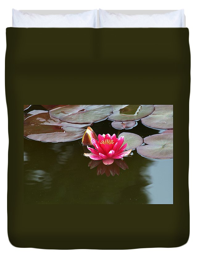 Water Lily Duvet Cover featuring the photograph Water Lily by Chris Day