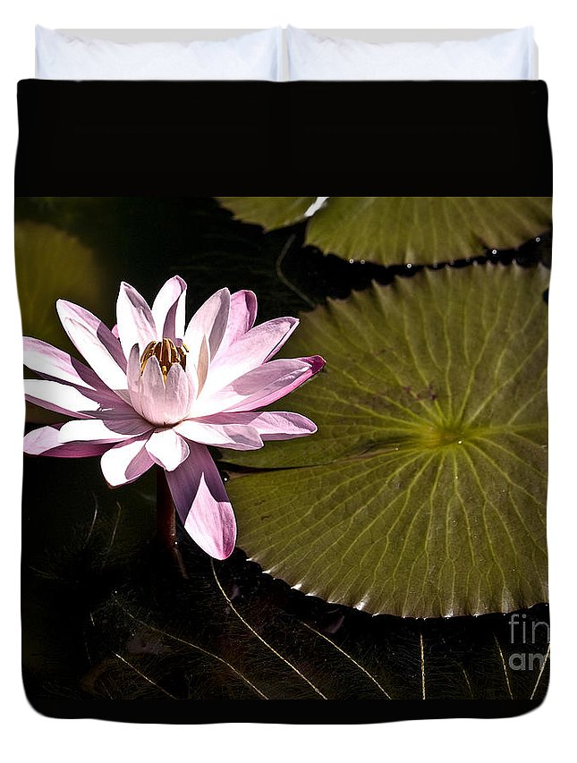 Water Llilies Duvet Cover featuring the photograph Water Lily by Heiko Koehrer-Wagner