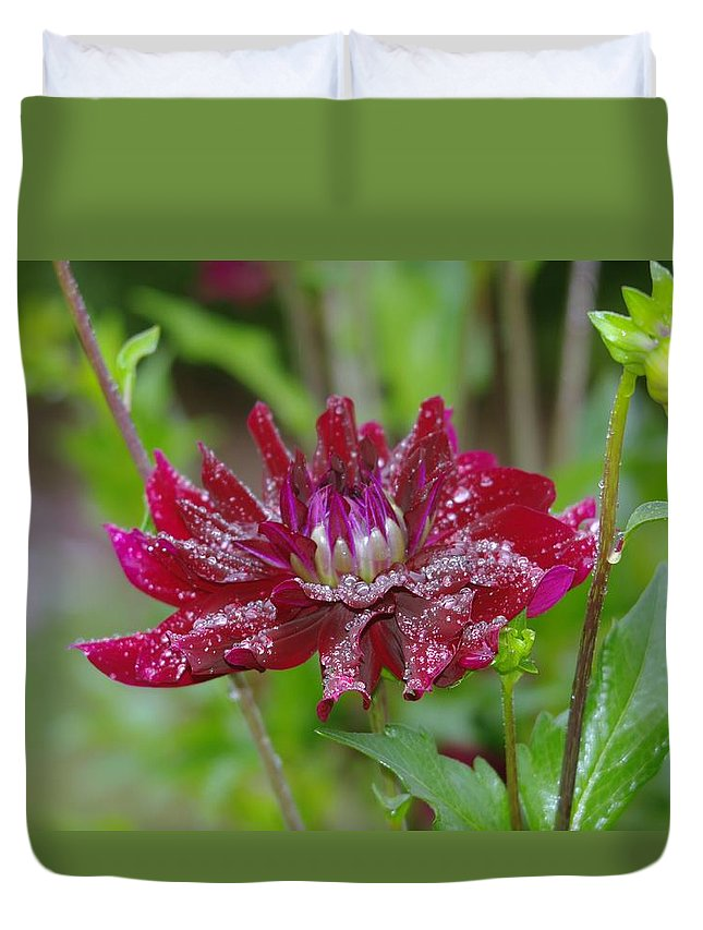 Viento Duvet Cover featuring the photograph Waterdrops On Petals by Jeff Swan