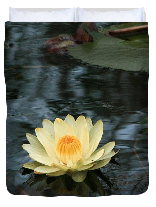 Karen Zuk Rosenblatt Art And Photography Duvet Cover featuring the photograph Waterlilly 1 by Karen Zuk Rosenblatt