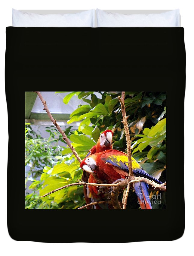 Exotic Bird Duvet Cover featuring the photograph We Are Ready For Pictures by Lingfai Leung