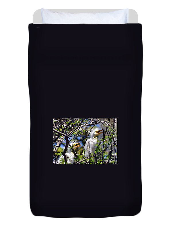Egret Chicks Duvet Cover featuring the photograph We Love You Mama by Lydia Holly