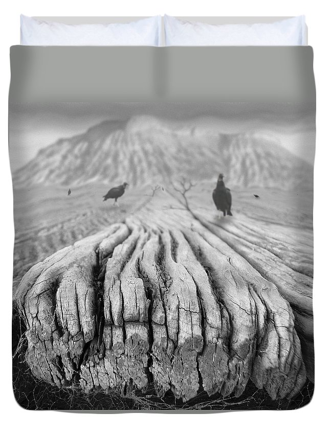 Surrealism Duvet Cover featuring the photograph Weathered 3 by Mike McGlothlen