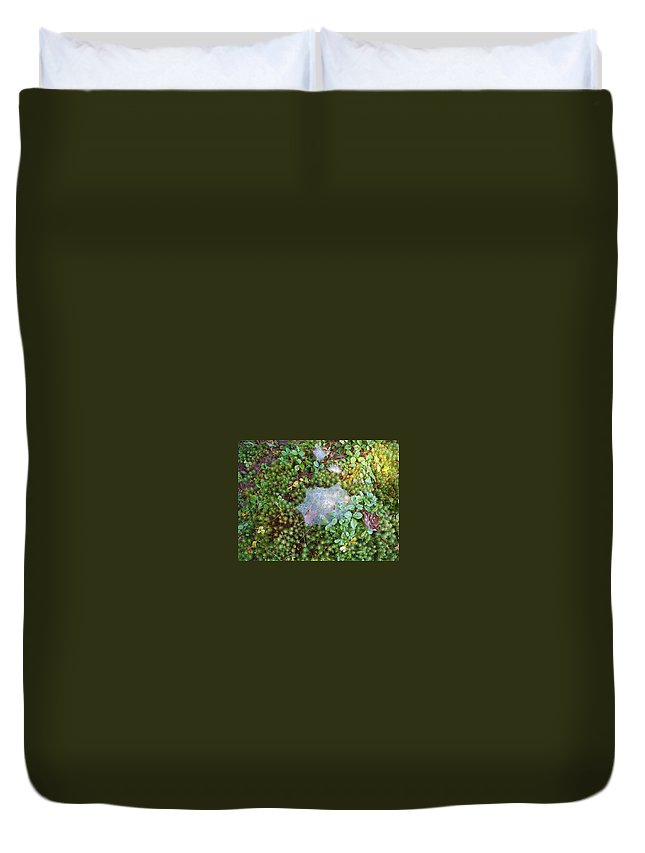 Nature Duvet Cover featuring the photograph Web In Moss by Lisa Wormell