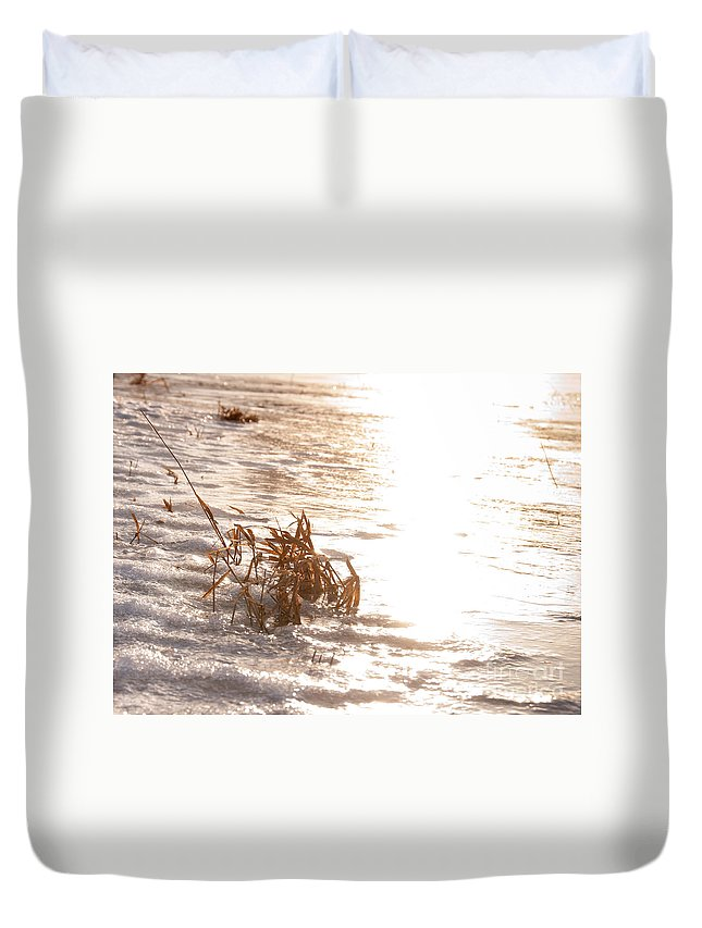 Sunset Duvet Cover featuring the photograph Weeds On Ice by Cheryl Baxter