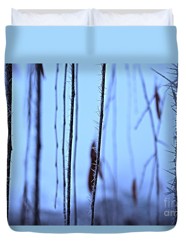 Background Duvet Cover featuring the photograph Weeping Forest Frost by Andrea Goodrich