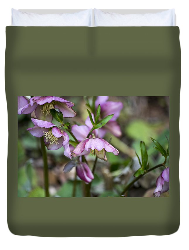 Pink Duvet Cover featuring the photograph Welcome Spring Flowers by Spikey Mouse Photography