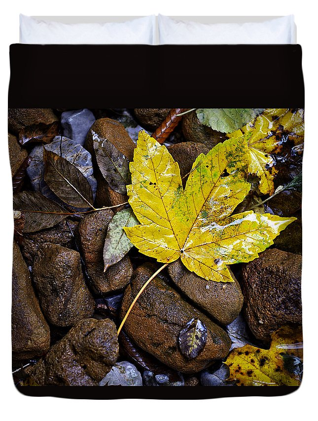 Nature Duvet Cover featuring the photograph Wet Autumn Leaf On Stones by Ivan Slosar