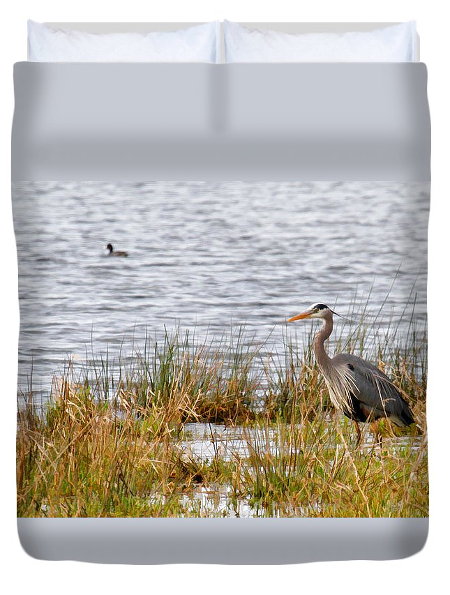 Blue Heron Duvet Cover featuring the photograph Wet Land Life by Steve McKinzie