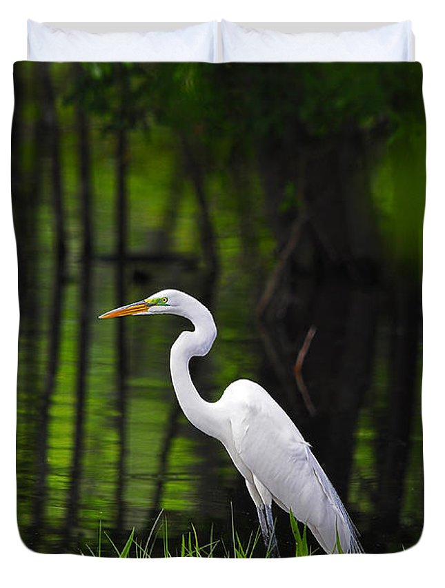 Great Egret Duvet Cover featuring the photograph Wetland Wader by Al Powell Photography USA
