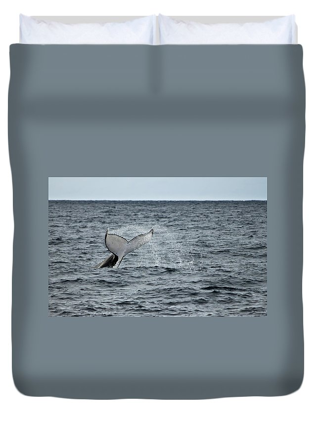 Whale Duvet Cover featuring the photograph Whale Of A Time by Miroslava Jurcik