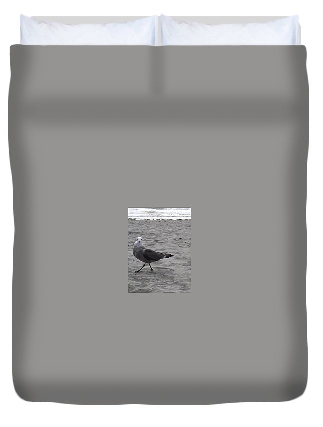 Seagull Duvet Cover featuring the photograph What are you looking at by Valerie Josi