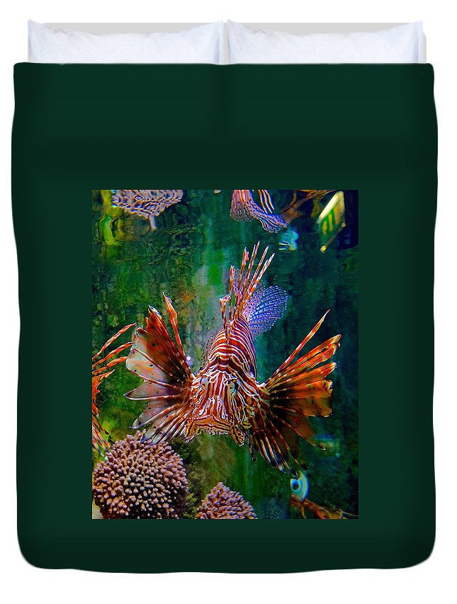 Lionfish Duvet Cover featuring the photograph What You Looking At by Tim G Ross