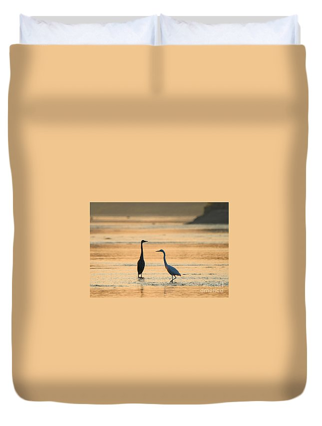 Heron Duvet Cover featuring the photograph What's Up 1940 by Jack Schultz