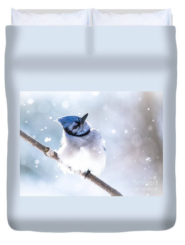 Duvet Cover featuring the photograph Whats Up With This Snow by Cheryl Baxter