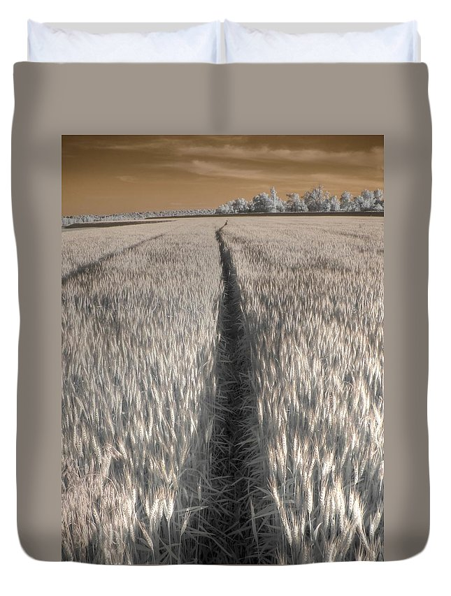 Wheat Duvet Cover featuring the photograph Wheat Field by Jane Linders