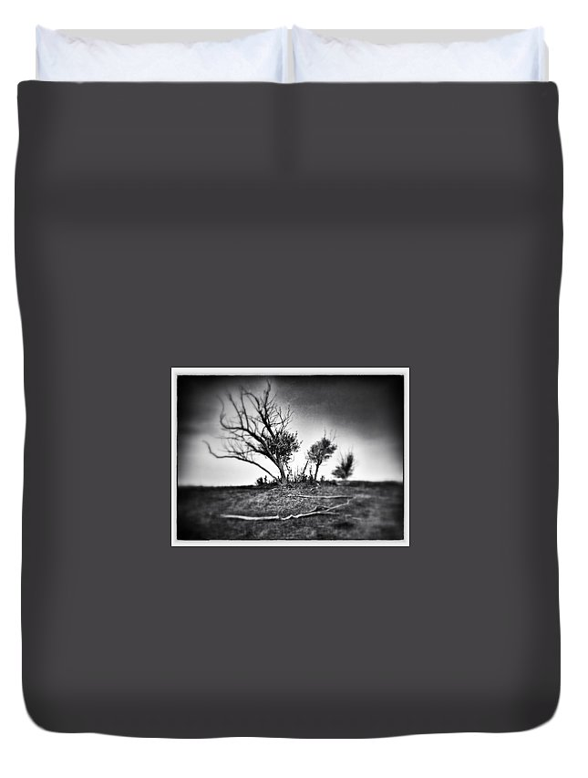 Trees Duvet Cover featuring the photograph Where Crows Sleep by The Artist Project