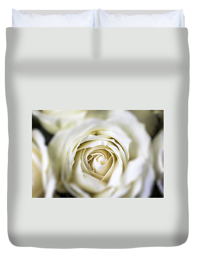 White Duvet Cover featuring the photograph Whie Rose Softly by Garry Gay