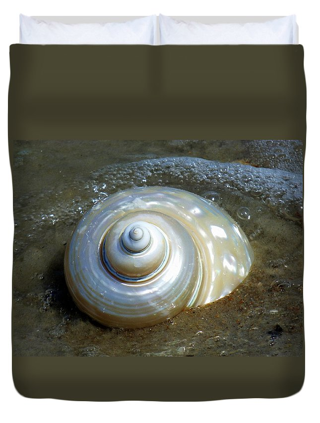 Seashells Duvet Cover featuring the photograph Whispering Tides by Karen Wiles