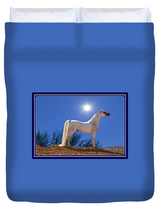 Horses Duvet Cover featuring the photograph White Beauty Under The Moonlight by Barbara Zahno