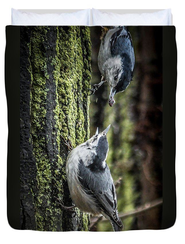 Tree Duvet Cover featuring the photograph White Breasted Nuthatchs by Ronald Grogan