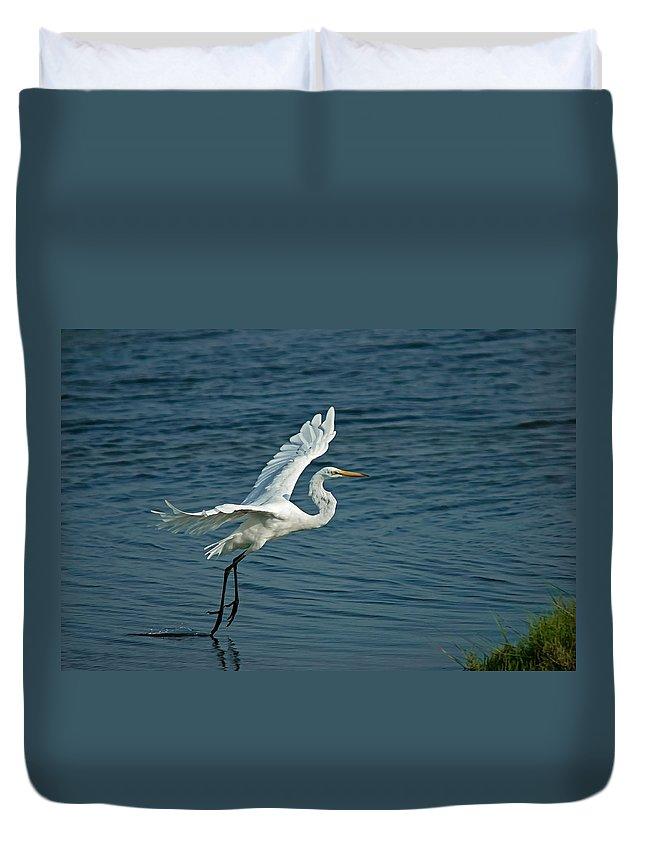 Birds Duvet Cover featuring the digital art White Egret Landing by Ernie Echols